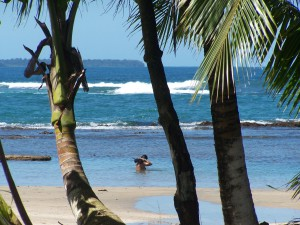Embrace Barefoot Luxury on the Caribbean coast of Costa Rica at Geckoes Lodge