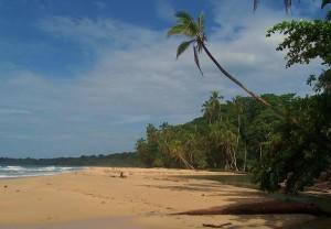 Playa Grande Puerto Viejo Costa Rica
